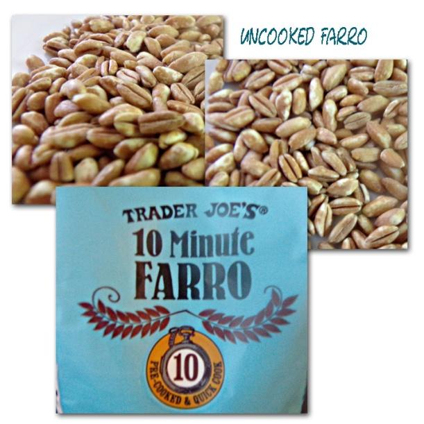 TJFarro